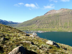 iceland (aka wijsland): my recommendations - travel -
